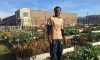 Οι σπόροι της ζωής φύτρωσαν στο πτωχευμένο Ντιτρόιτ