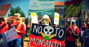 Εξαίρεση ζήτησε η Ελλάδα από τα μεταλλαγμένα της Monsanto