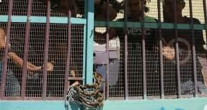 Κρήτη: Υπό κατάληψη τρία σχολεία - Διαμαρτύρονται για τα κενά γονείς και μαθητές