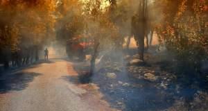 Φωτιά στην Κέρκυρα σε περιοχή κοντά στο αεροδρόμιο