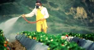 Έκλεισε η συμφωνία: Η Bayer αγοράζει τη  Monsanto
