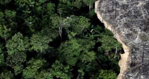 Η ομορφιά μαζί με την καταστροφή στο τροπικό δάσος του Αμαζονίου [ΦΩΤΟ]