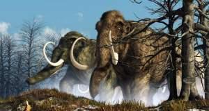 Η «νεκρανάσταση» των μαμούθ