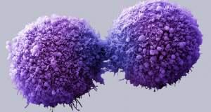 Θα μπορέσουμε να νικήσουμε τον καρκίνο;