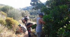 'Ελληνες και Τούρκοι εθελοντές καθαρίζουν μονοπάτια σ' ένα χωριό της Ικαρίας