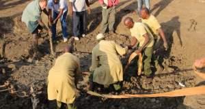 Απελπισμένη ελεφαντίνα παρακολουθεί την διάσωση του μωρού της