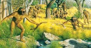 Ποιος περπάτησε στην Κρήτη πριν από 6 εκατομμύρια χρόνια