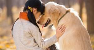 Γιατί κάποιοι αγαπούν τα ζώα και άλλοι όχι;