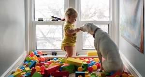 Κακοποιημένη σκυλίτσα έτρεμε τους πάντες εκτός από αυτό το μωρό [ΦΩΤΟ]