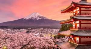 Οι ανθισμένες κερασιές της Ιαπωνίας [ΦΩΤΟ+ΒΙΝΤΕΟ]