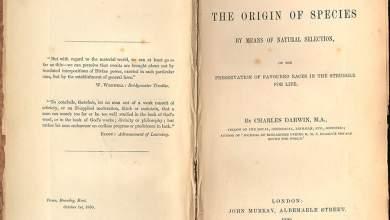 Σαν σήμερα, εκδίδεται «Η Καταγωγή των Ειδών» του Δαρβίνου