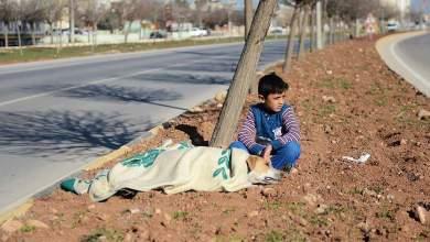 Προσφυγόπουλο φροντίζει τραυματισμένο αδέσποτο - Του δίνει την κουβέρτα του