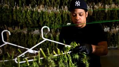 ΗΠΑ: H μαριχουάνα ντοπάρει την αγορά ακινήτων
