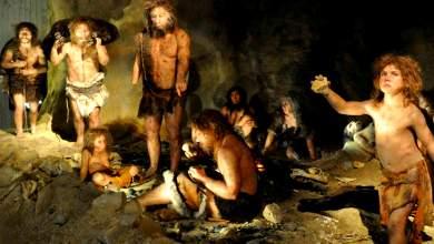 Εμφανίστηκε ο πρώτος άνθρωπος στην Ελλάδα;