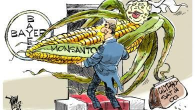 Monsanto - Bayer: Έρευνα της Κομισιόν για τον «γάμο της κόλασης»