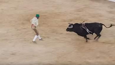Ταυρομάχος σκοτώθηκε ενώ αντιμετώπιζε ταύρο 500 κιλών με γυμνά χέρια [ΒΙΝΤΕΟ]