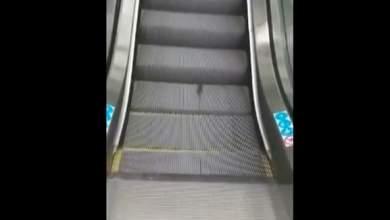 Ποντίκι κάνει διάδρομο σε κυλιόμενες σκάλες [ΒΙΝΤΕΟ]