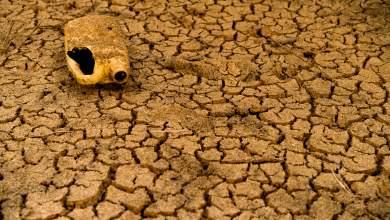 Διαρροή Εγγράφων: Διατροφικός και ενεργειακός «Αρμαγεδών» απειλεί τη Μέση Ανατολή