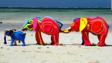 Μετατρέποντας πλαστικά από τις ακτές σε έργα τέχνης! [Φωτογραφίες & Βίντεο]
