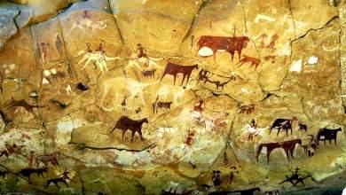 Οι καλλιέργειες της νεολιθικής εποχής έριξαν το σπόρο της σύγχρονης ανισότητας