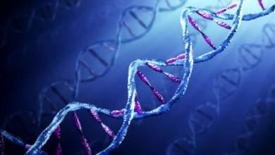 Όπλα γενετικής εξαφάνισης ειδών;