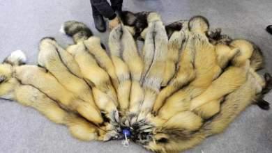 Τέλος οι γούνες στη Νορβηγία