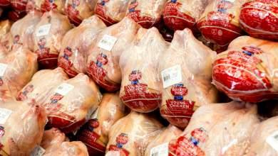 Κολοσσοί της βιομηχανίας κρέατος: Γραμμή παραγωγής στον υπόνομο