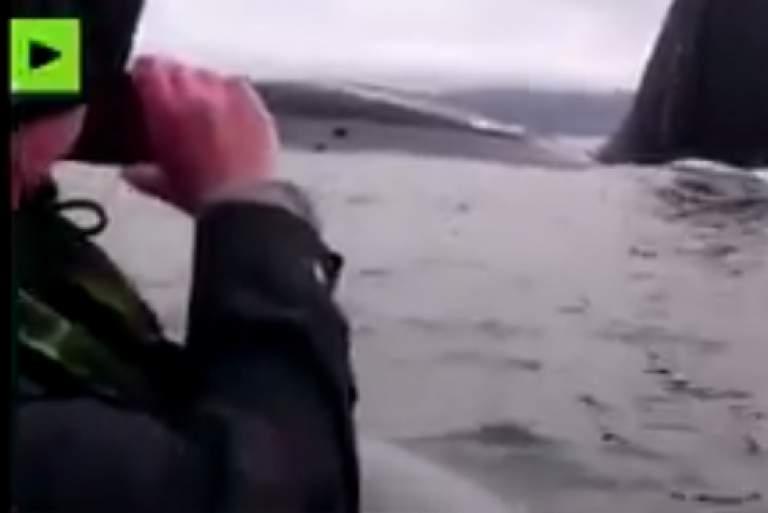 Ψάρευαν και ξαφνικά αναδύθηκε δίπλα τους... υποβρύχιο [ΒΙΝΤΕΟ]