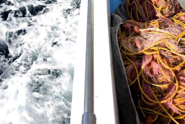 Φρέσκο ψάρι από το Ίντερνετ